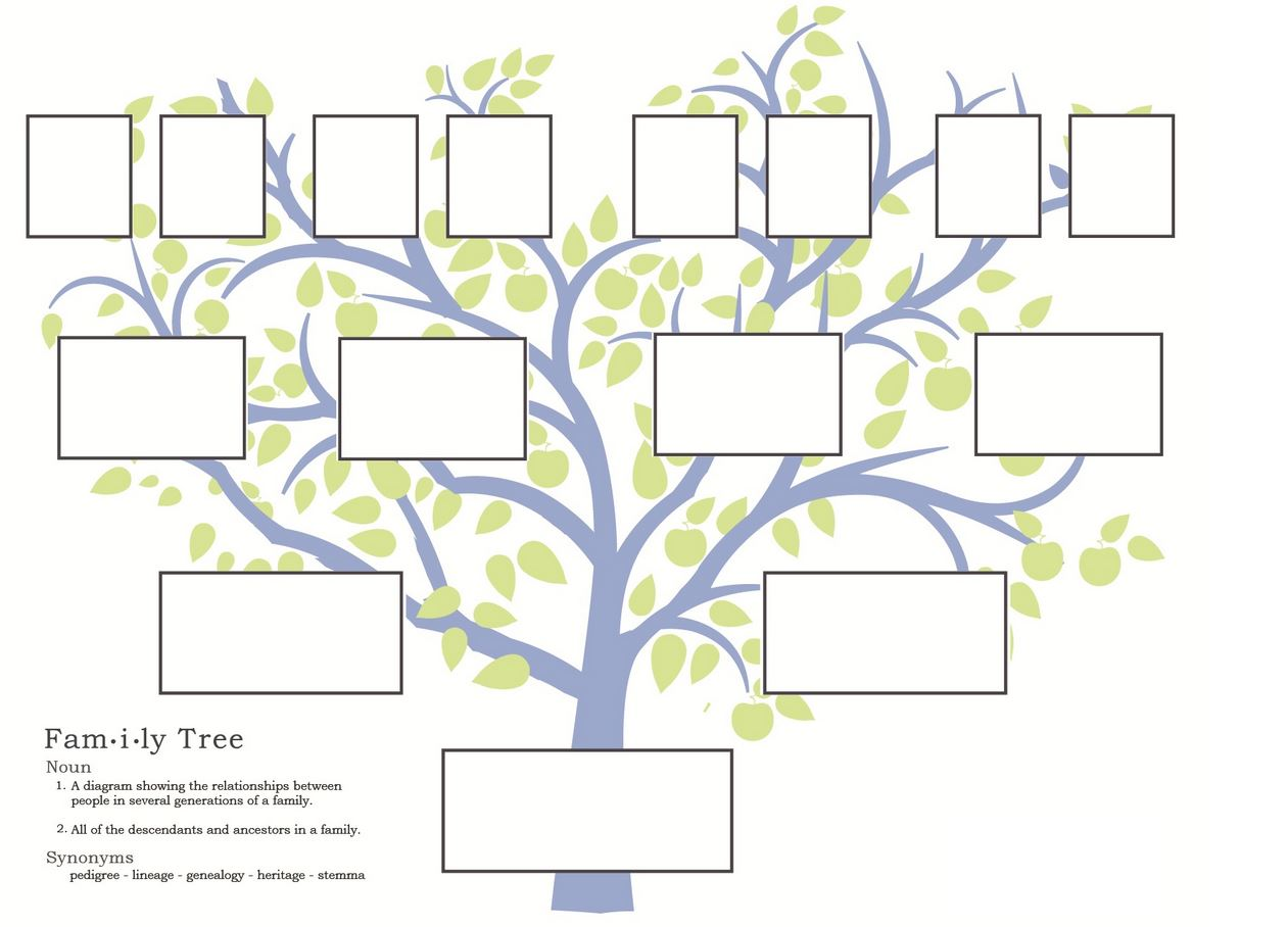 Нарисовать генеалогическое дерево рисунки